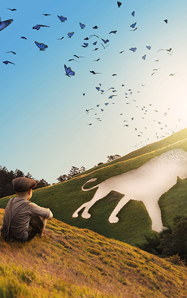 The Butterfly Lion   Chichester Festival Theatre 19